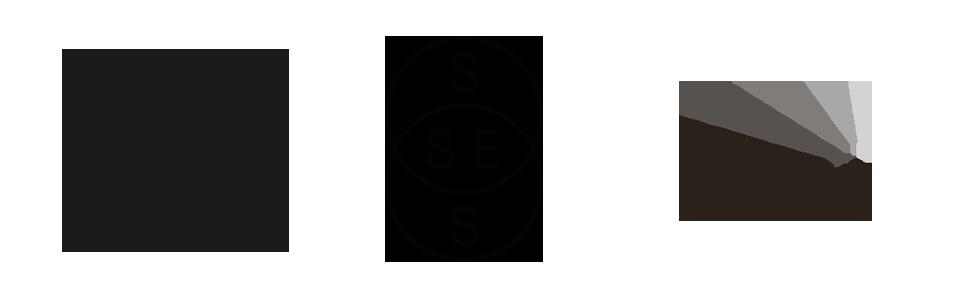 SSES logo, HOI Logo, ESBRI logo